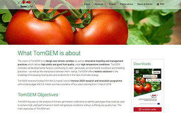 Tomgem website 1